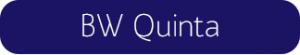 HiLo_Blog_FontChoices_Buttons_IT_BWQuinta
